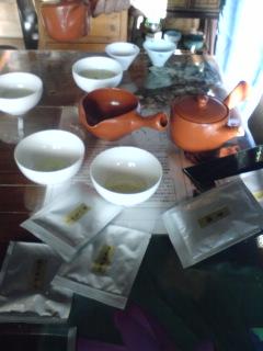 お茶の品種5種