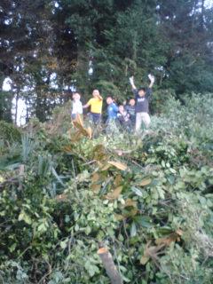 茶の樹の山で遊ぶ